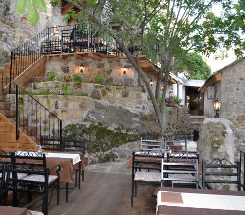Restaurant outdoor with tree branches hanging from top and empty tables on terrace.